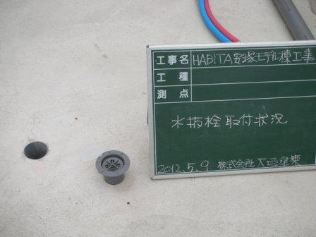 DSCN5430.jpg
