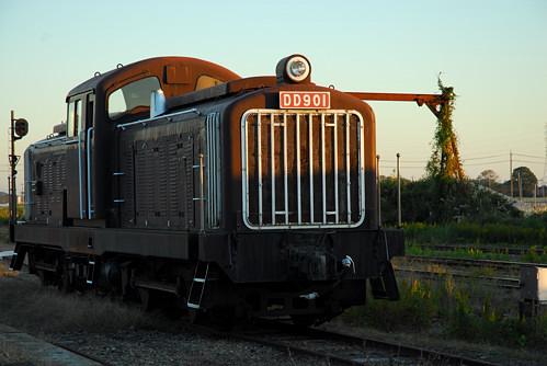 DD901