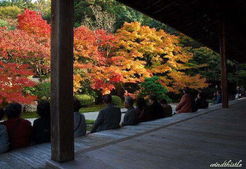 天授庵の庭園を眺める観光客