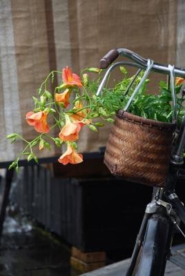 投げ入れの花