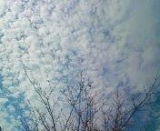 20111017091608.jpg