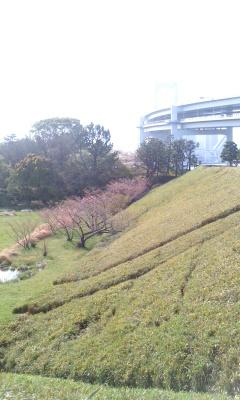 公園の中2
