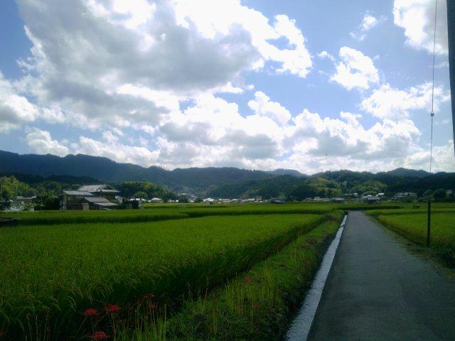 2011-09-19 12.04.36.jpg
