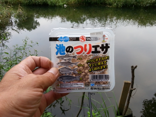 コピー 〜 DSC_0152.JPG