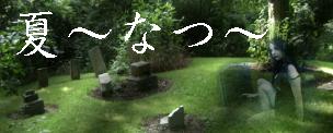 ブログ掲載版「徳之美人名鑑−夏の章−」