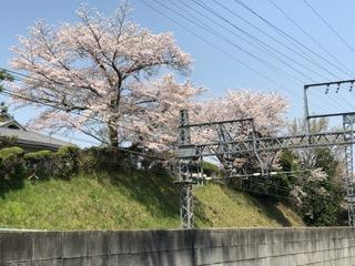 IMG_0156.近所JPG.JPG