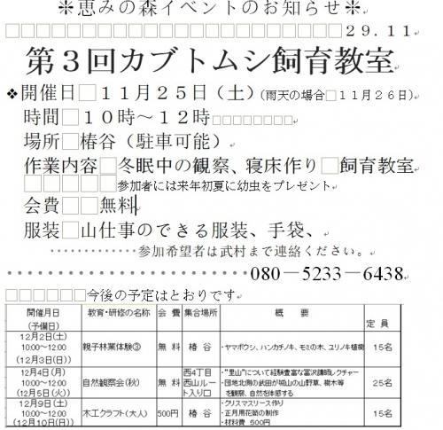 カブトムシ29.11.jpg