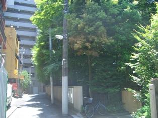 片平の良覚院丁公園入口