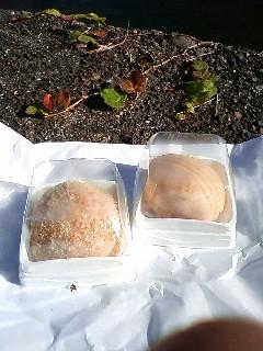 仙台 森の香本舗の山づとと亥の子餅