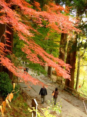 平泉 中尊寺の紅葉