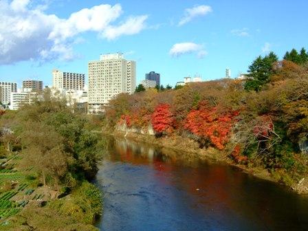 仙台 中の瀬橋から見た西公園の紅葉