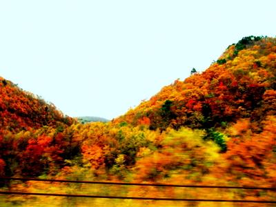 山形道の紅葉