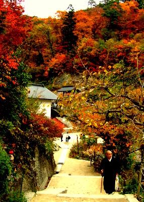 山寺 立石寺の紅葉と階段