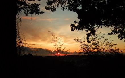 仙台城跡からの朝日