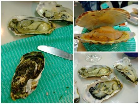 牡蠣の殻むきレッスン