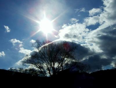 広瀬川沿いの青空