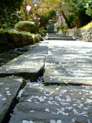 塩竃神社の石畳