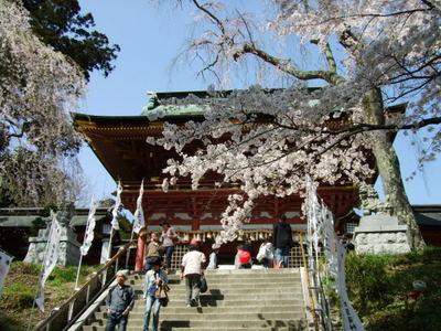 塩竃神社の階段と桜