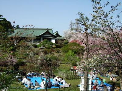 塩竃神社に集う花見客