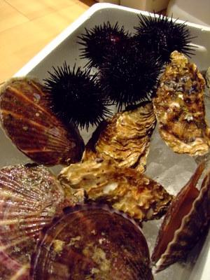 気仙沼のウニ、帆立、牡蠣