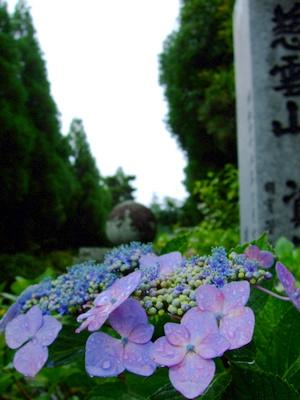 資福寺入口