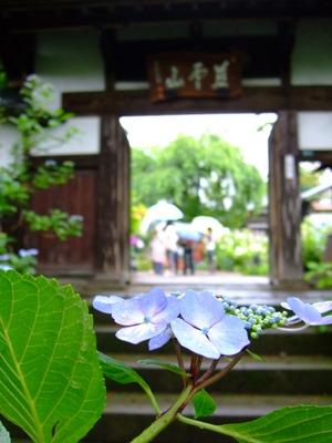 資福寺入口前