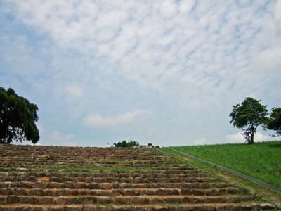 多賀城史跡への道
