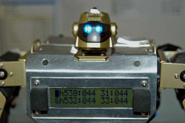 RZ-1 PEEK表示