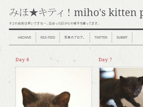 tumblr.で子猫のブログはじめました