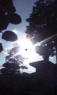 Image436.jpg