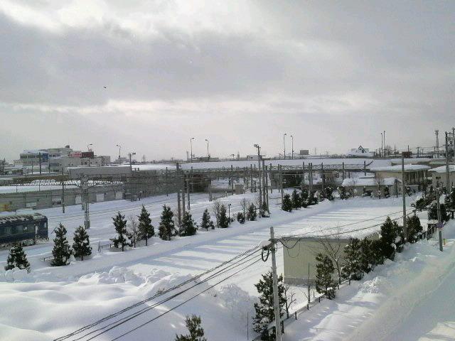 2011013008440001.jpg