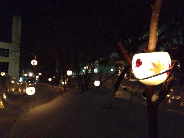 小樽雪あかり5.JPG
