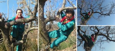 小さい頃、よく遊んだ柿の木にて撮影。