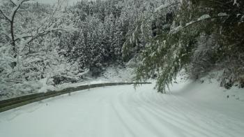 雪降った!