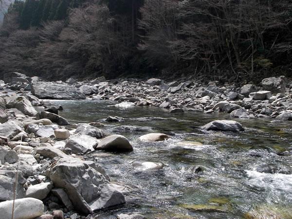 tenkawa_2014_4_17.jpg