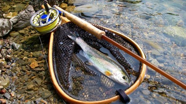 芥川マス釣り場最初の一尾