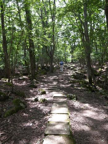 ノルウェイの森