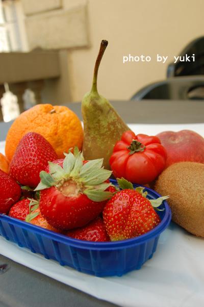 フルーツたち