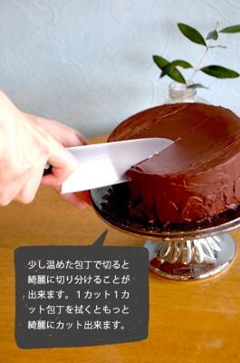 パリパリチョコのジェラートアイスケーキ