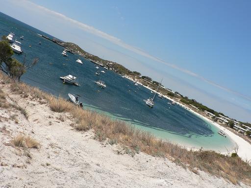 ロットネスト島2