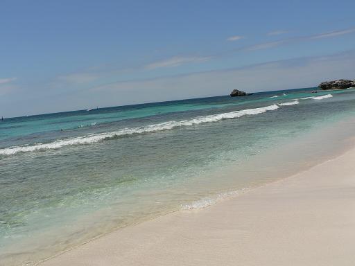 ロットネスト島3