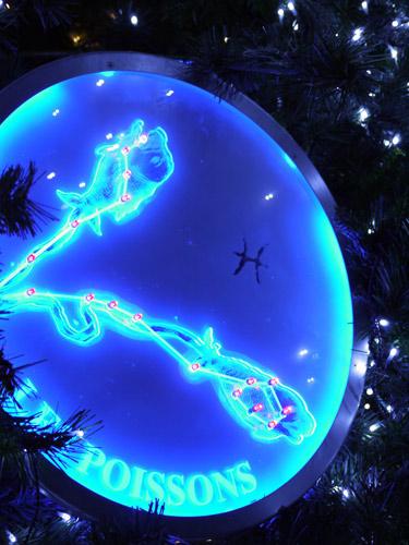 六本木ヒルズのクリスマスツリー