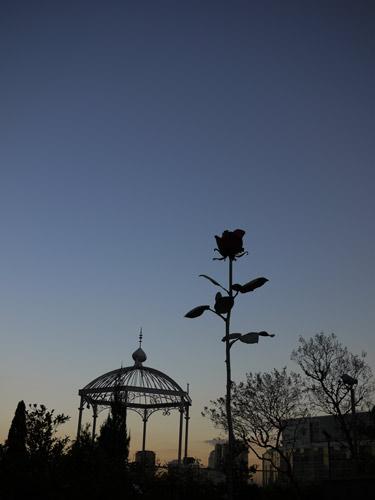 六本木ヒルズに咲く巨大なバラ