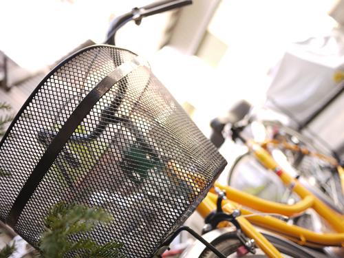 自転車ハル