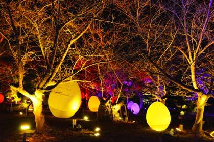 福岡城、チームラボ、城跡の光の祭