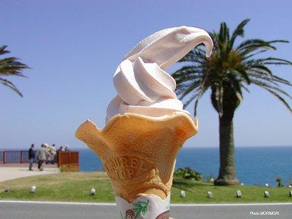 エビ味ソフトクリーム