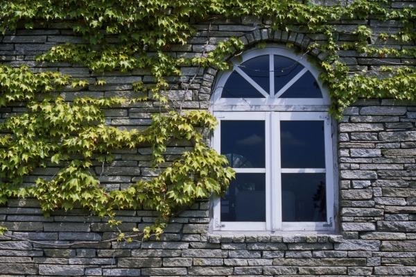 マイホームの窓