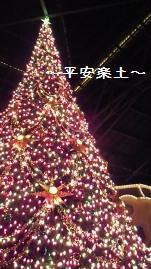 ワールドバザール内のクリスマスツリー