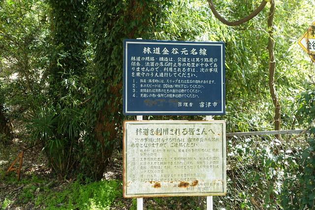 金谷元名林道1.jpg