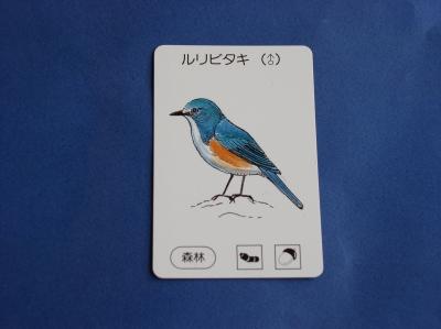バードゲーム 鳥カード